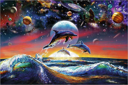 dolphin-universe-9943.jpg