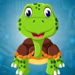 G4K Pleasing Tortoise Esc…