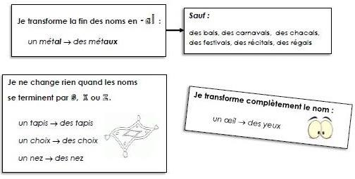 Liczba mnoga rzeczowników - gramatyka 7b - Francuski przy kawie