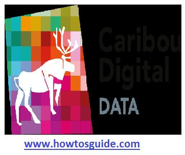 Caribou Digital Data