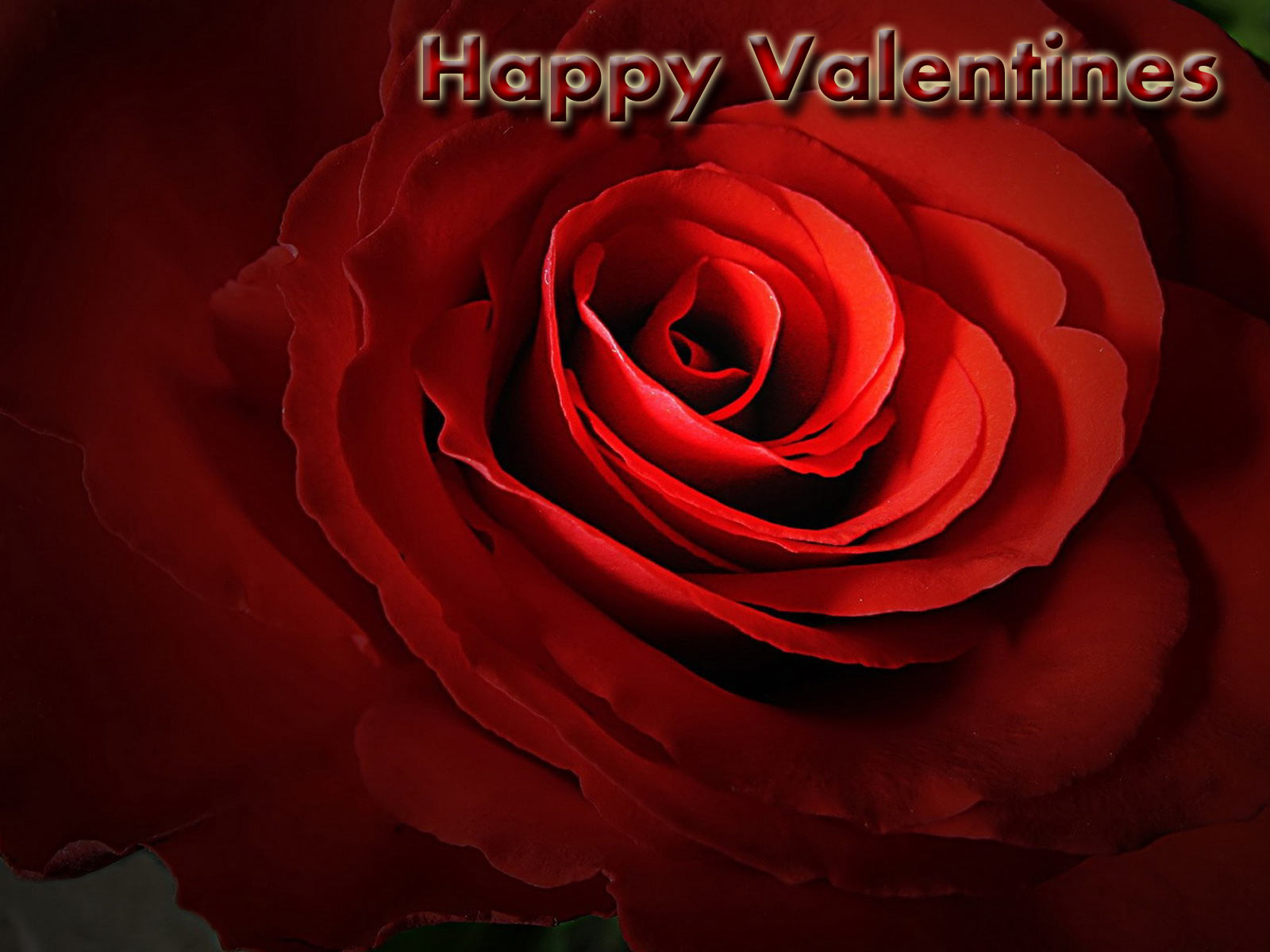 valentines day wallpaper 2012 | I - Celebes