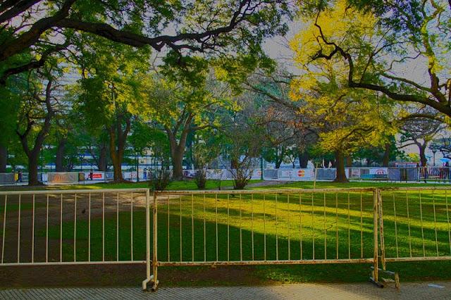 Fotos terreno vallado y con árboles alrrededor