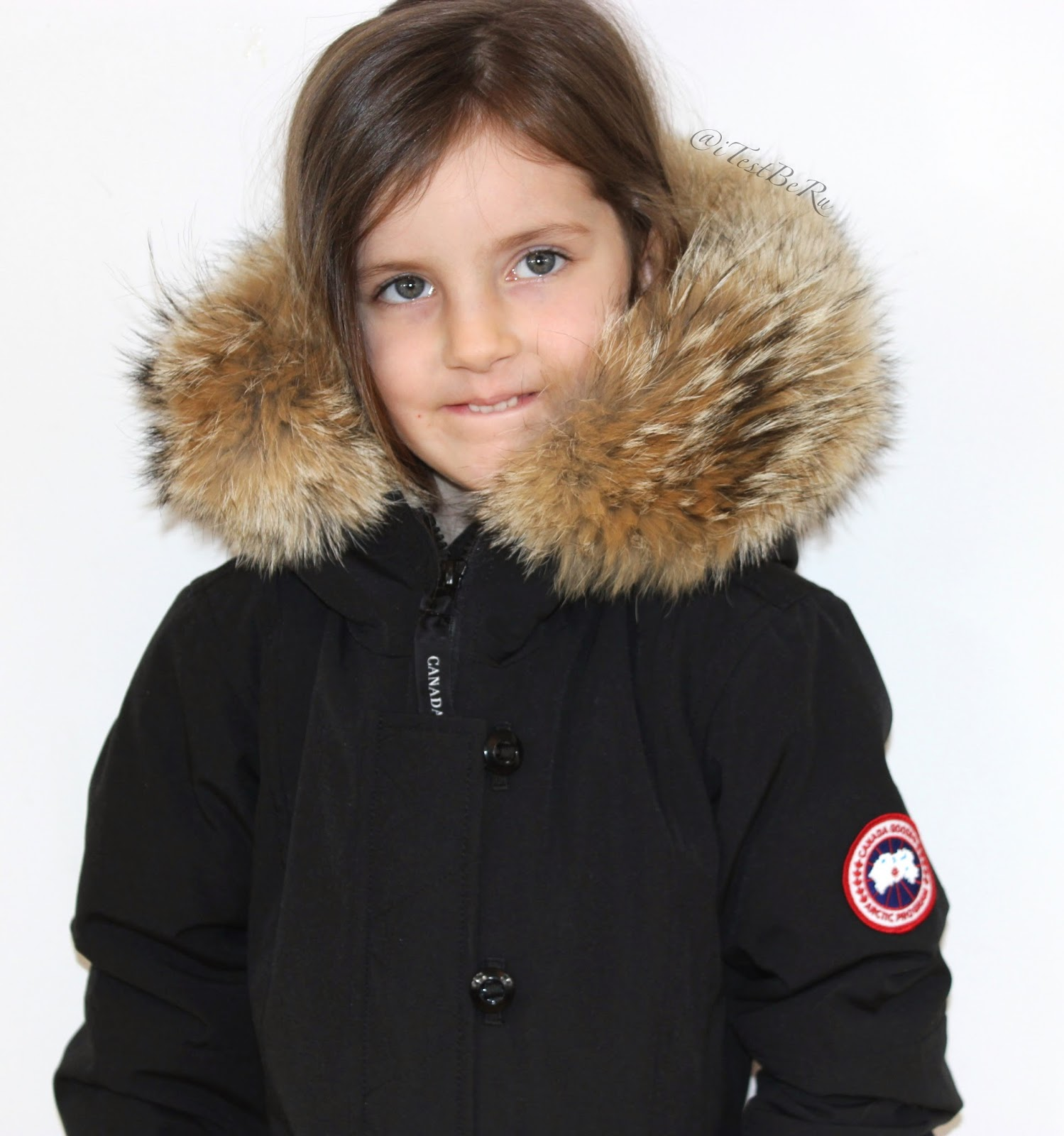 brittania canada goose jacket
