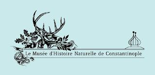 le musée d'histoire naturelle d'ecole imperiale constantinople ile ilgili görsel sonucu