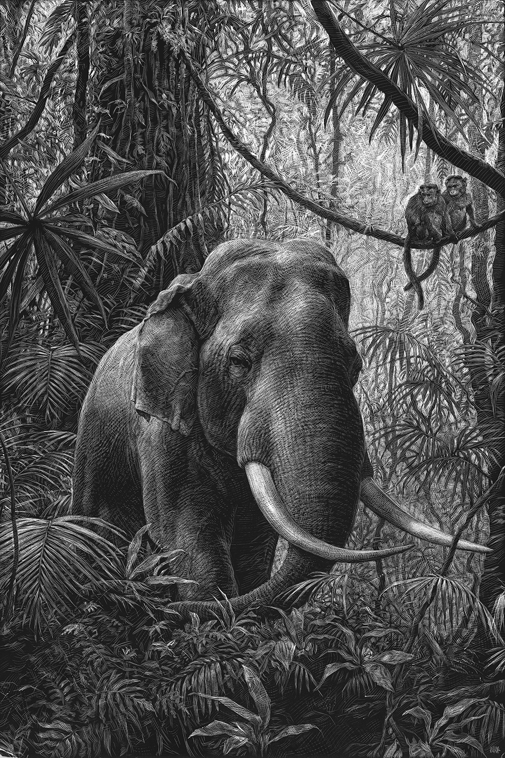 10-Elephant-and-Monkeys-Ricardo-Martinez-Wild-Animals-inside-Scratchboard-Drawings-www-designstack-co