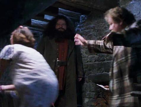 Doble de acción de Rubeus Hagrid en Harry Potter y la piedra filosofal - Cine de Escritor