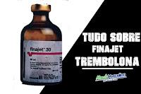 Anabolics #08 finajet-trembolona origem