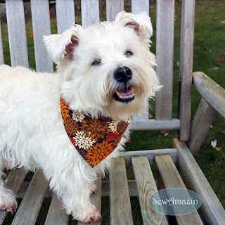 Autumn Mums Thanksgiving Dog Bandana