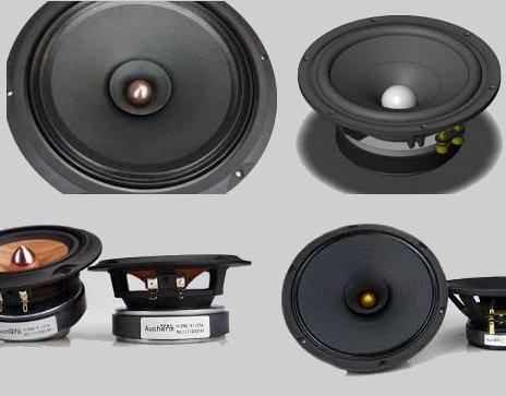 Driver Speaker Full-Range