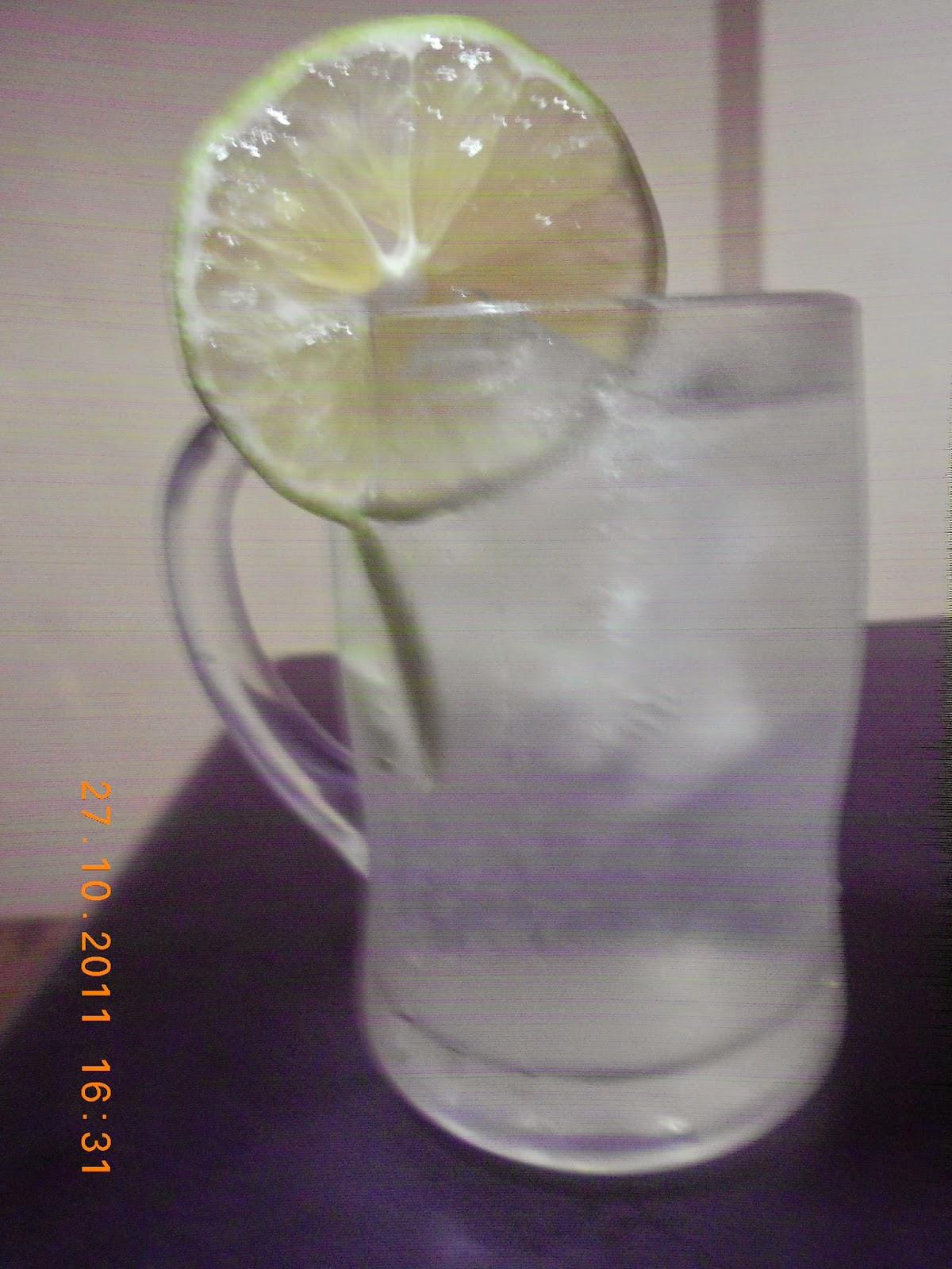 Polo Shirt Hijau Lemon Kerah Abu Misty Tua