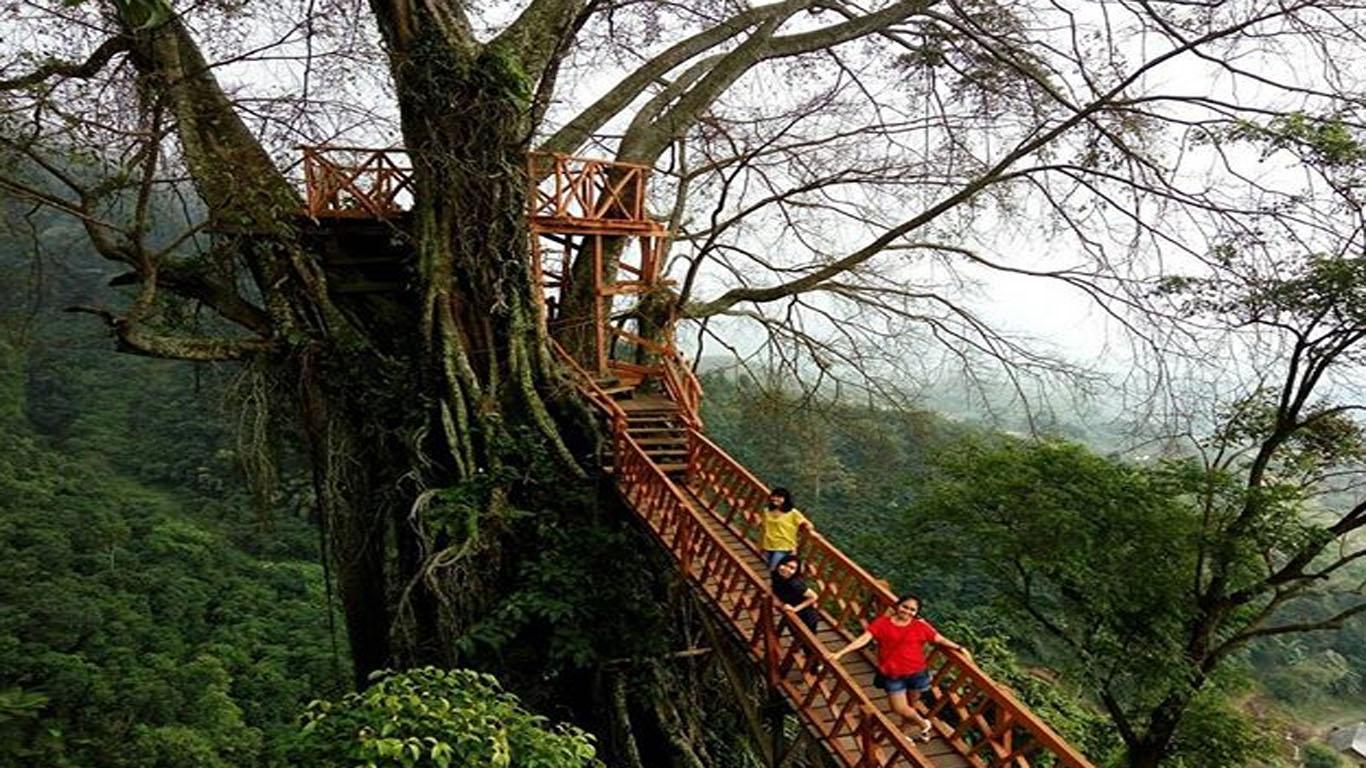 Tempat wisata di Bogor: Curug Ciherang