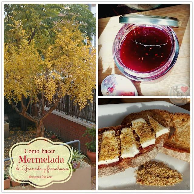 Mermelada de Granada y Frambuesa