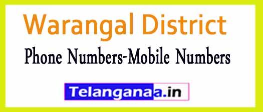 Ghanpur (Stn)Mandal Sarpanch Upa-Sarpanch Mobile Nembers List