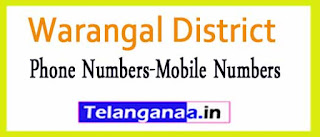Ghanpur (Stn)Mandal Sarpanch Upa-Sarpanch Mobile Nembers List Warangal District in Telangana