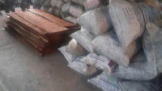 Medio Ambiente incauta Carbón vegetal, tablones de Cedro y varias libras de Pez Loro en Barahona