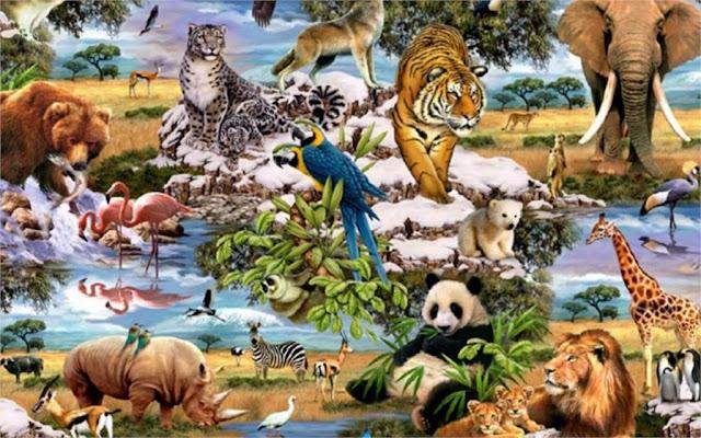 عجائب الحيوانات تعرف علي عجائب الخلق في عالم الحيوان