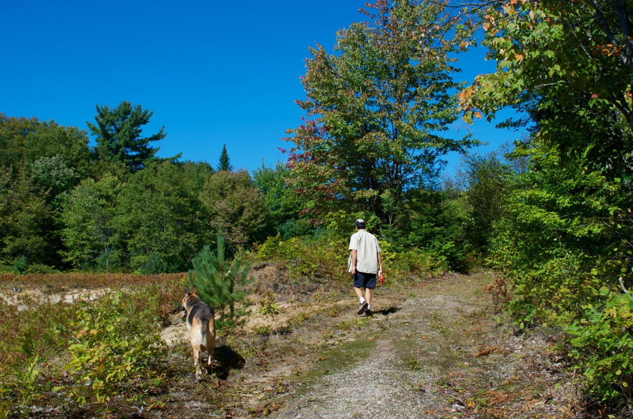 Hiking Trails In Muskoka Best Hiking Trails In Ontario