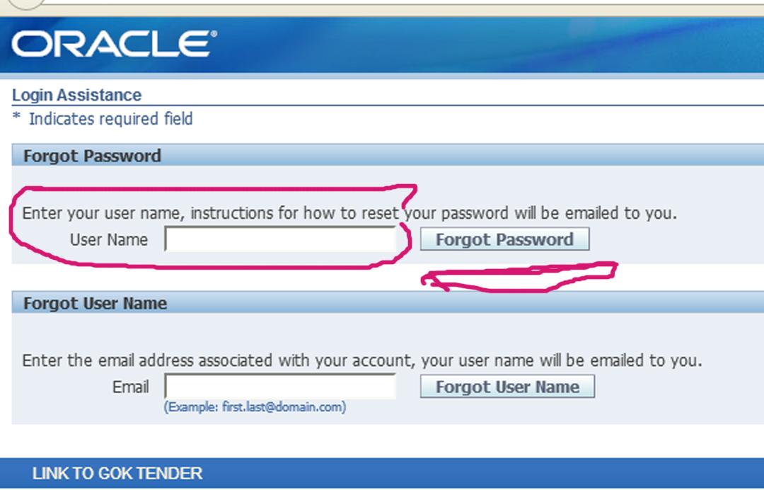 Winstar Technologies: How to Reset IFMIS Password