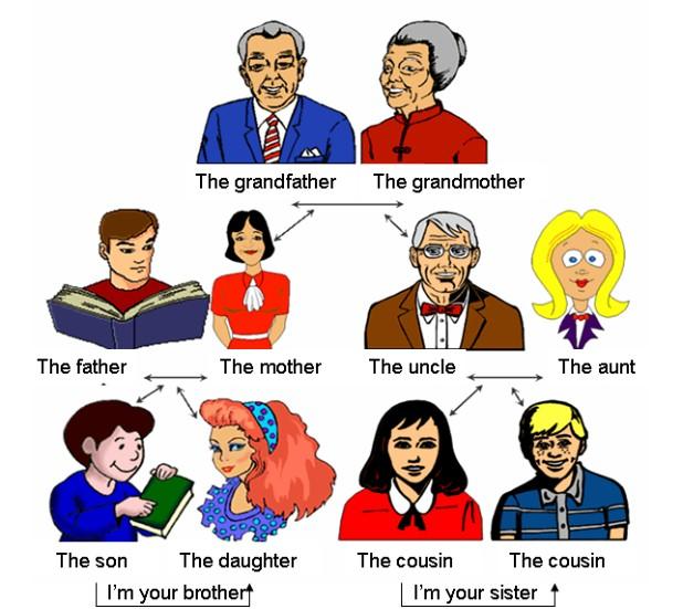 MIEMBROS DE LA FAMILIA EN INGLES DOWNLOAD