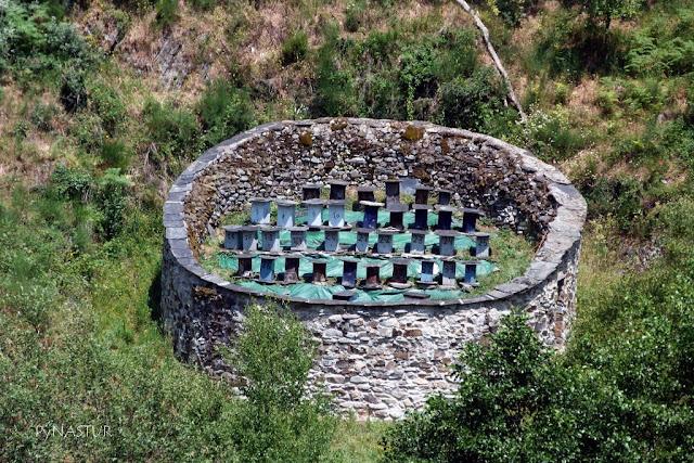 Colmenar típico del noroeste de España denominado Cortín - Moal Cangas del Narcea