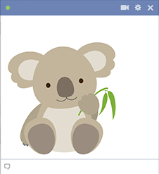Cute koala sticker for Facebook