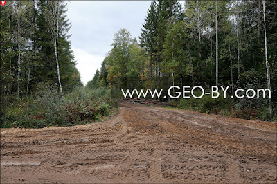 Дорога Налибоки-Клетище