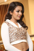 Catherine Tresa in a White Glittering Crop Top Black Leggings  Exclusive 027.JPG