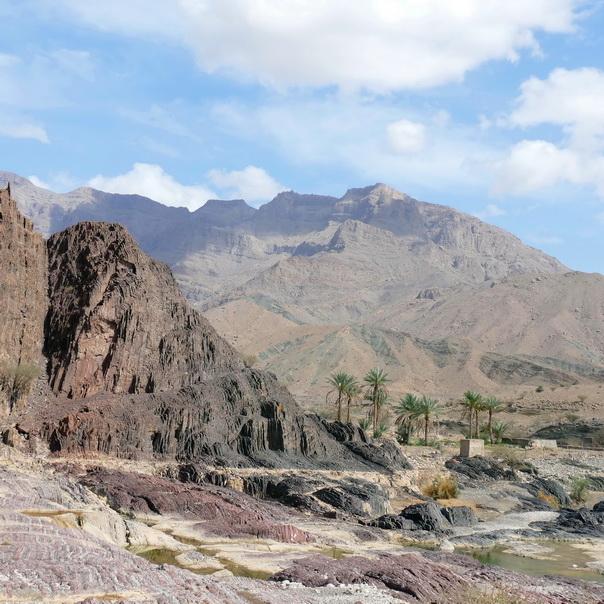 Wadi, Bergtal, Berge, Tal, Oman, Palmen