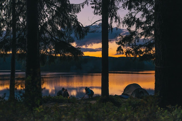 camping in forest where to vacation