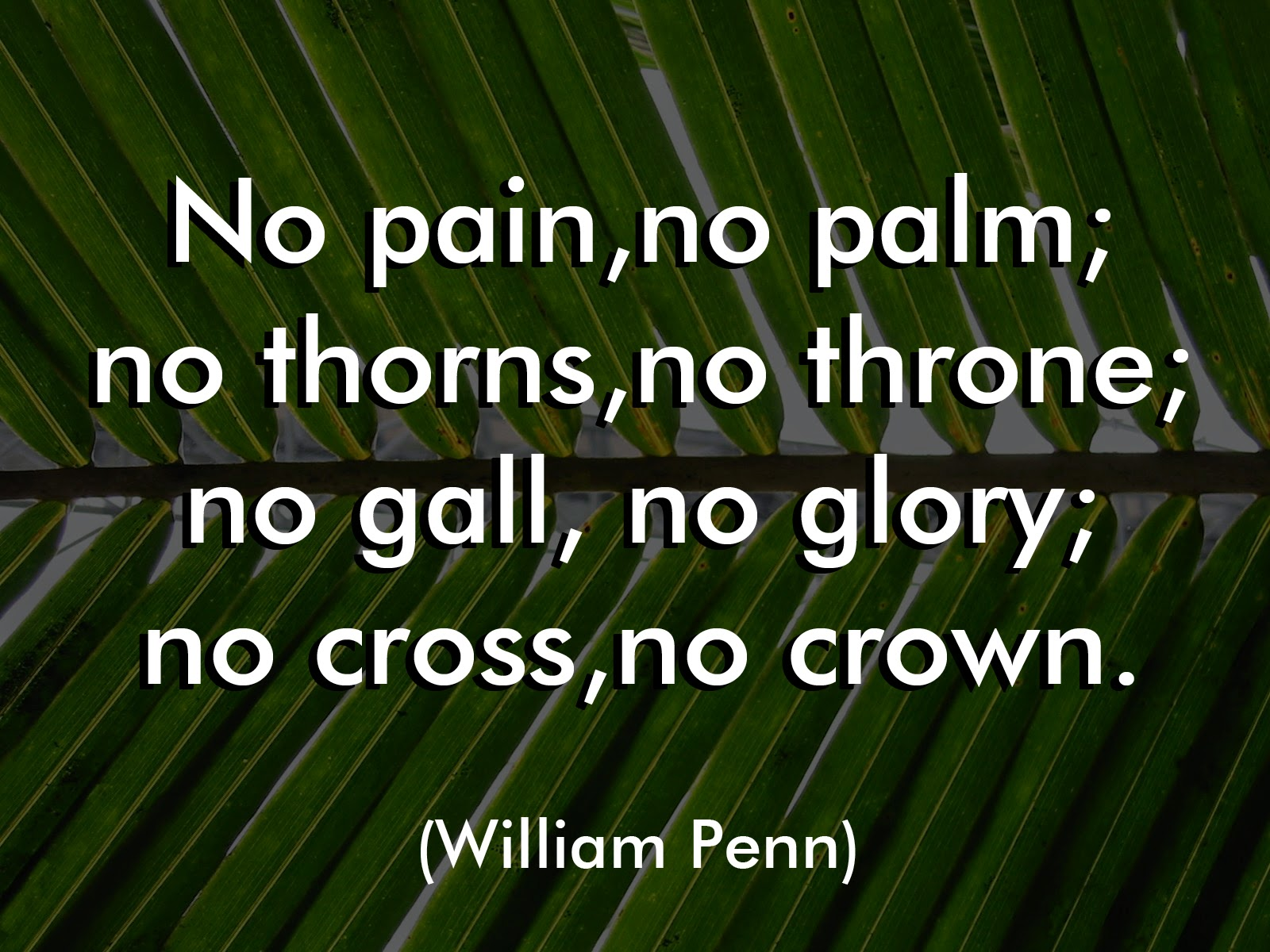 Palm Sunday: Quotes, Images And Wallpaper For Celebration