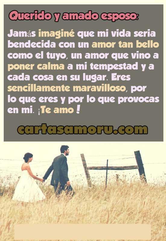 Frases De Amor Para Mi Amado Esposodedicatorias