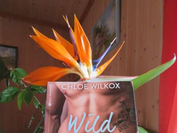 Wild love : Bad boy & secret girl, intégrale, tome 2 de Chloe Wilkox