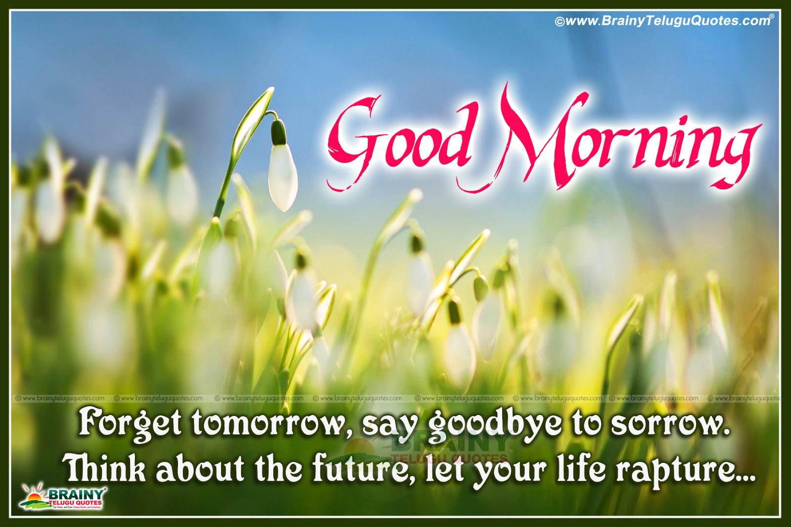 Good Morning Greetings And Inspiring Quotes In English Language