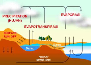 Proses Evapotranspirasi