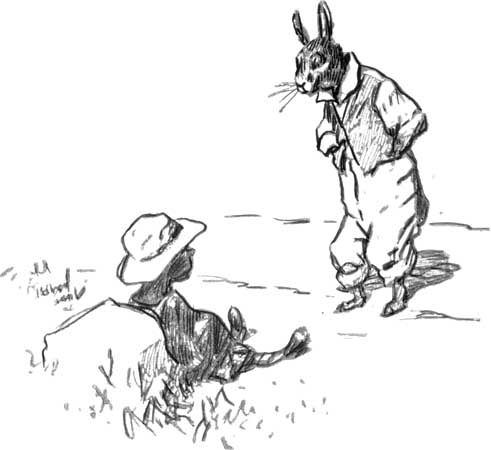 An analysis of the tale brer rabbit and the tar baby
