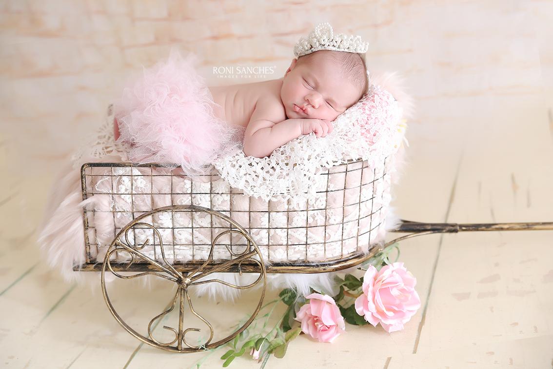 ensaio fotografico de recém-nascido newborn