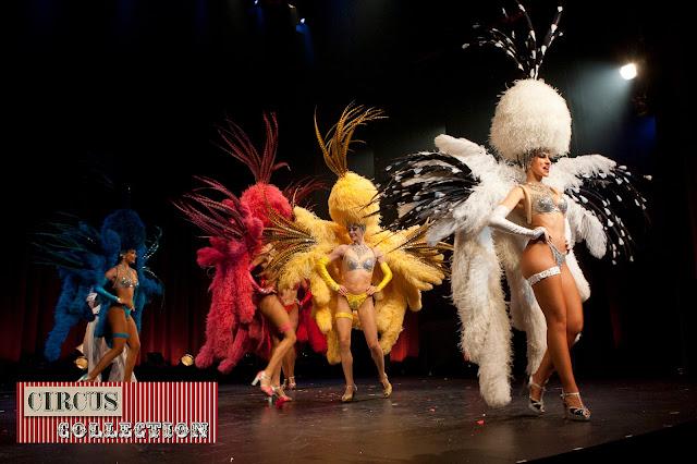les plumes et paillettes  du ballet