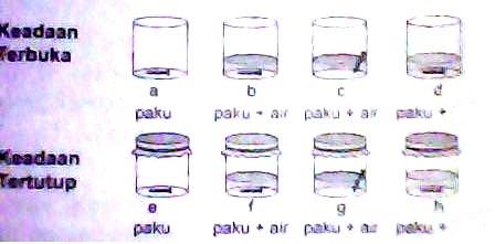 Permata S Blog Laporan Praktikum Kimia Korosi