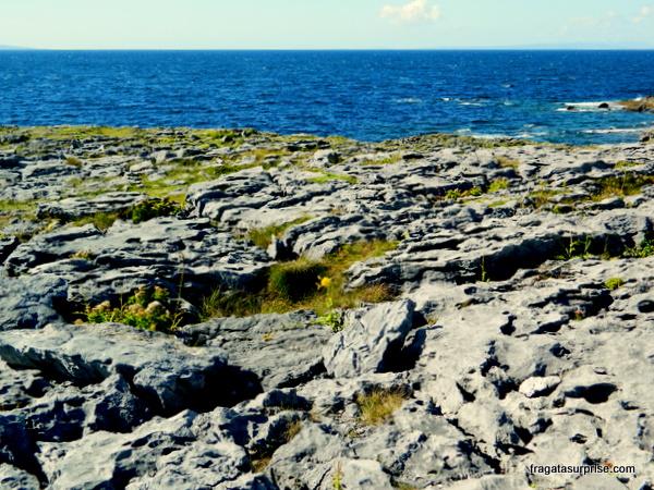 Burren, Condado de Clare, Irlanda