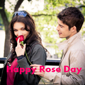 Romantic Couple Rose Day Whatsapp DP Images and Status