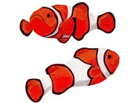 https://www.embroiderydesignsfreedownload.com/2018/04/fish-red-white-free-machine-embroidery.html