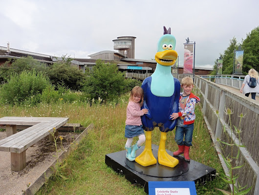Our Visit to Slimbridge WWT & The Dusty Duck Trail