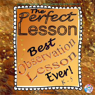 The Perfect Lesson - Renee Dawn