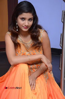 Telugu Actress Aarti Stills in Long Dress at Plus One ( 1) Audio Launch  0054.jpg
