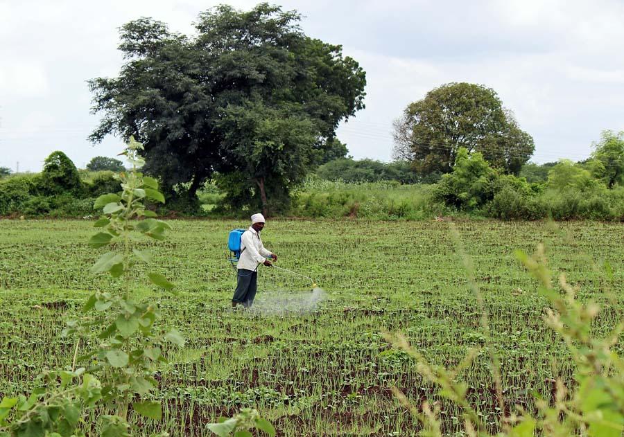 pesticide in hindi