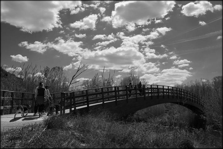 fotografia,puente,paisaje,valencia,naturaleza,rio