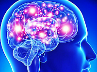 Cellule staminali: riparano danni motori post ictus