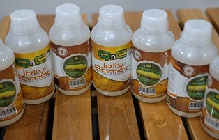 Agen Resmi QnC Jelly Gamat Di Kota Denpasar ( BALI )