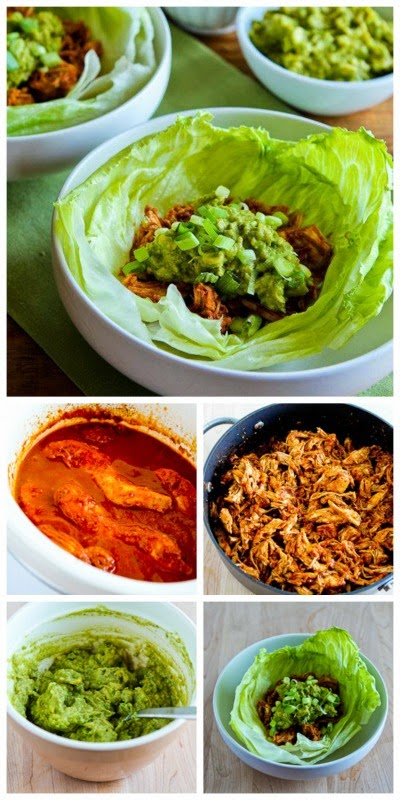 Slow Cooker Pulled Chicken (or pork) Lettuce Wraps from Kalyn's Kitchen found on SlowCookerFromScratch.com
