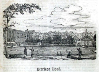 Peerless Pool